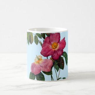 Rosa gallica,Pierre Joseph Redouté Coffee Mug