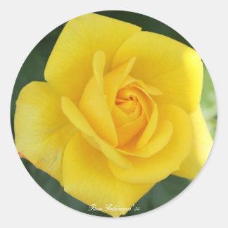 Rosa Goldmarie '84 Round Sticker