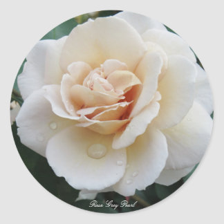 Rosa Grey Pearl Round Sticker