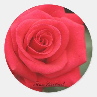 Rosa Kardinal Round Sticker