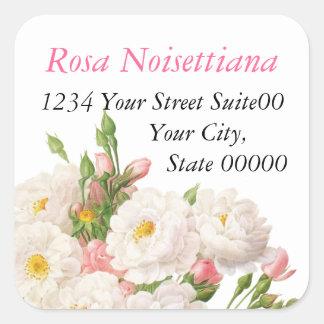 Rosa Noisettiana_Redoute Square Sticker