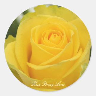 Rosa Penny Lane Round Sticker