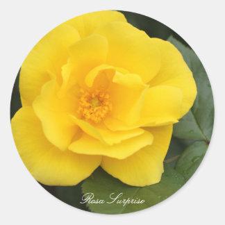 Rosa Surprise Round Sticker