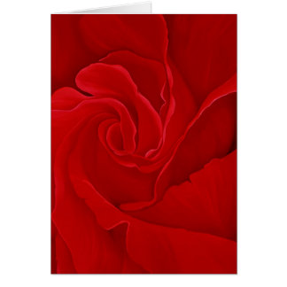 Rose #16 Greeting Card
