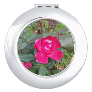 rose 1 compact mirror