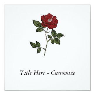 "Rose 5.25"" Square Invitation Card"
