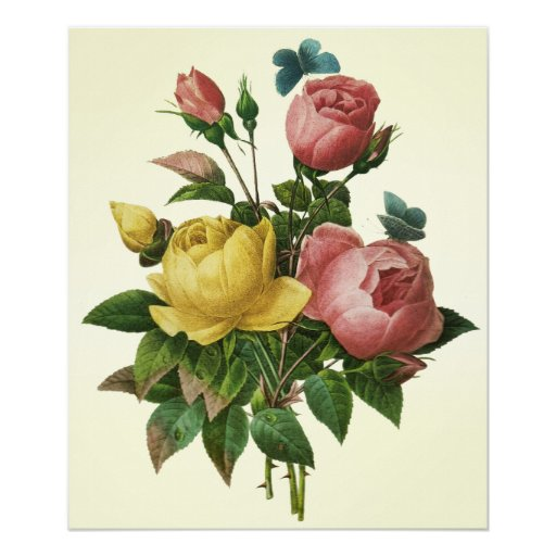 Rose and Butterfly Bouquet, Pierre Redoute Poster