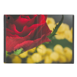 Rose and mimosas iPad mini case