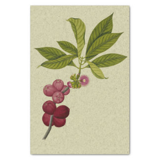 Rose Apple botanical print Tissue Paper