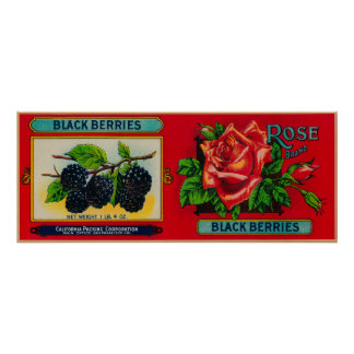 Rose Blackberry Label Posters