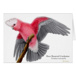 Rose Breasted Cockatoo Greeting Card