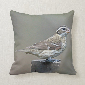 Rose-Breasted Grosbeak Female Songbird Throw Pillow