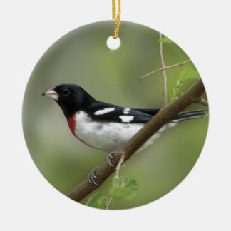Rose Breasted Grosbeak Round Ceramic Ornament