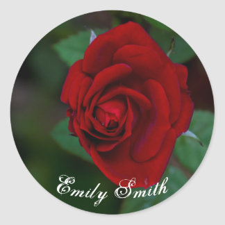 Rose Bud Classic Round Sticker