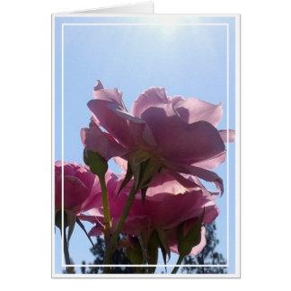Rose card, blank, 7 card