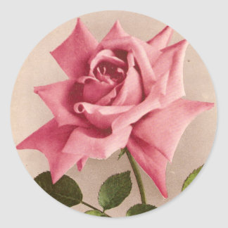 Rose Classic Round Sticker