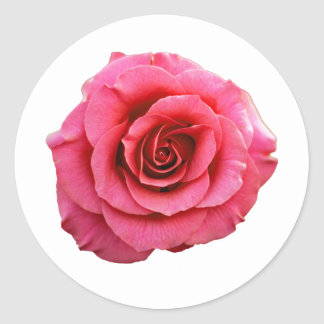 Rose  Clear Classic Round Sticker