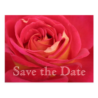 Rose Customizable 75th Birthday Save the Date Postcard