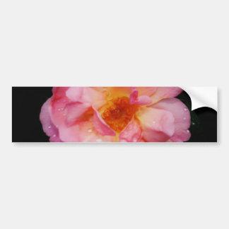 Rose de rose avec l arrière - plan noir de baisses adhésifs pour voiture