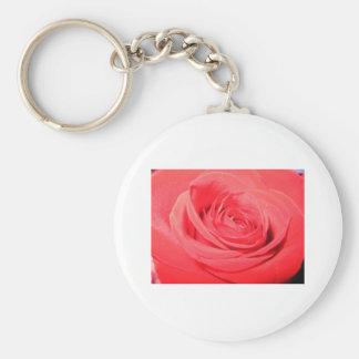 rose,deep pink rose basic round button keychain