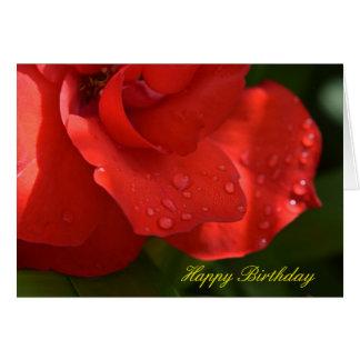 Rose dew birthday card