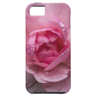 Rose drops iPhone 5 cases