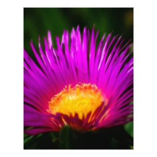 Rose électrique prospectus en couleur