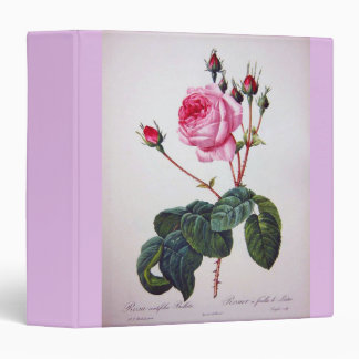 Rose flower, Pierre Joseph Redouté 3 Ring Binder