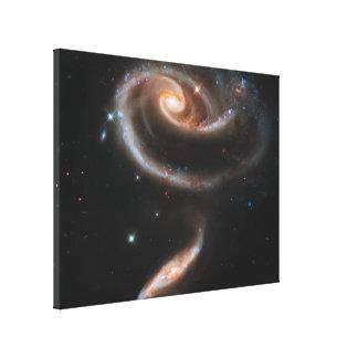 Rose Galaxy Gallery Wrap Canvas