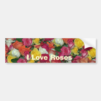 rose galore bumper sticker