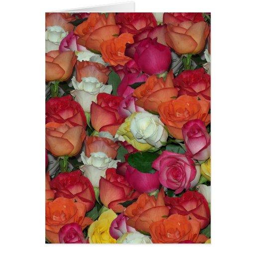 rose galore greeting card