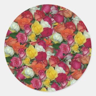 rose galore round sticker