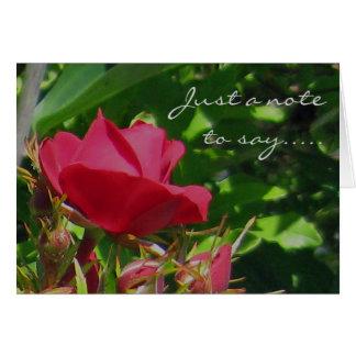 Rose Garden Note Card
