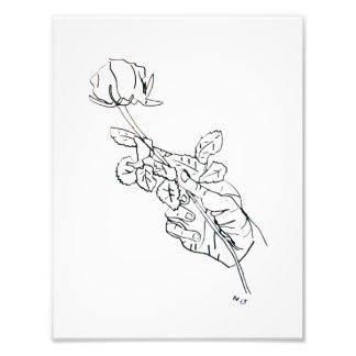 Rose Hand Line Drawing Photographic Print