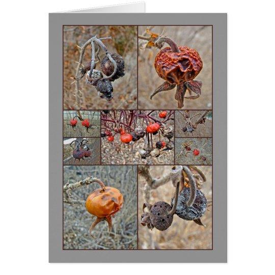 Rose Hip Collage Card