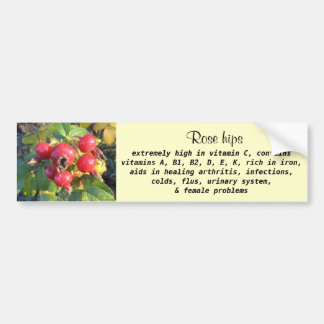 Rose hips bumper sticker