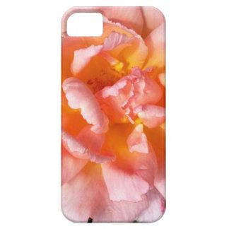 rose in autumn iPhone 5 cover
