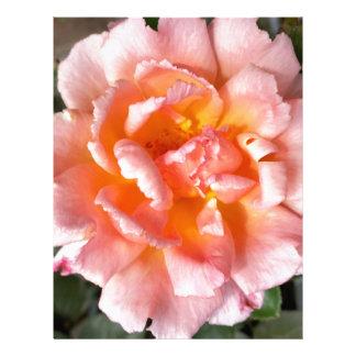 rose in autumn letterhead