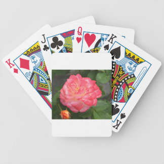 Rose in bloom bicycle playing cards