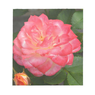 Rose in bloom notepad