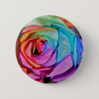 Rose in multi-colours Button Badge
