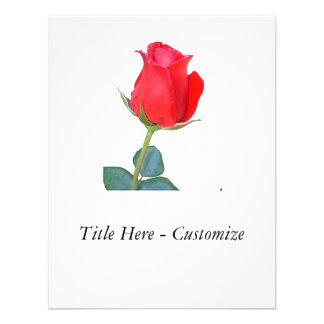 Rose Announcements