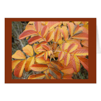 Rose Leaf in Autumn Blank Note Card