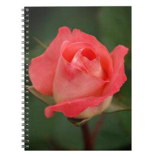 rose note book