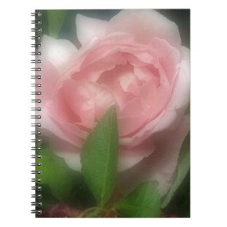 Rose Notebooks