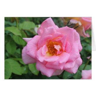 Rose Notecard