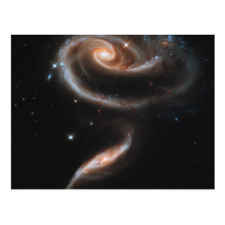 Rose of Galaxies Postcard