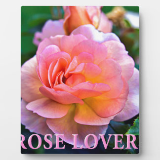 ROSE OF LOVER PLAQUE