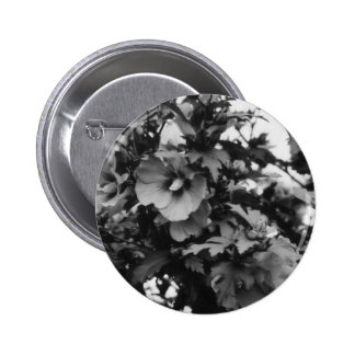 Rose of Sharon Button