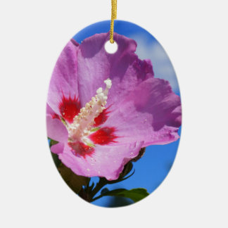 Rose of Sharon Ceramic Oval Ornament